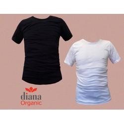 455 - Ανδρικό Οργανικό T-shirt